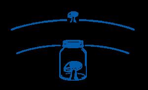 Mason Jars & Mushroom Group Pty Ltd Logo